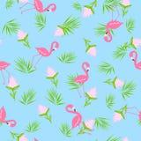 Flaminga bezszwowy wzór Obrazy Royalty Free