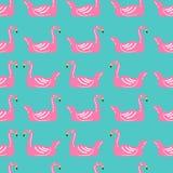 Flaminga dopłynięcia pierścionku bezszwowy wzór Obrazy Royalty Free