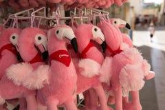Flaminga mokiet bawi się na sprzedaży w Saintes Maria De Los angeles Mer, France zdjęcie royalty free