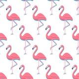 Flaminga Ptasi tło - Retro bezszwowy wzór w wektorze zdjęcie royalty free