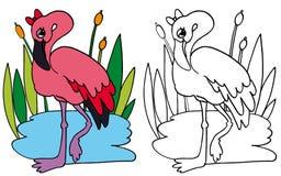 Flaminga różowy KOLOR i BW Fotografia Royalty Free