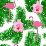 Flaminga wektoru egzotyczny bezszwowy wzór obraz stock