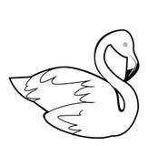 Flaminggo. Illustrator design .eps 10 Royalty Free Stock Photography