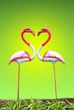 Flamingi na zielonym tle Zdjęcie Royalty Free
