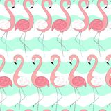 2018 01 30_flamingo royalty-vrije illustratie