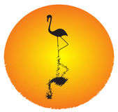 Flamingo. Vector picture of silhouette of flamingo standing in water and big orange sun stock illustration