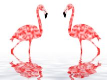 flamingo royaltyfri illustrationer