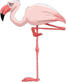 Flamingo vector illustratie