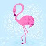 Flamingo_1 Arkivfoto