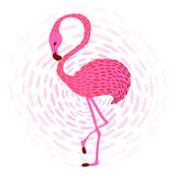 Flamingo_1 Immagine Stock