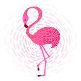Flamingo_1 Fotografering för Bildbyråer
