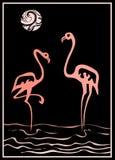 flamingo ilustracja wektor
