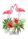 Flamingo agava watercolor postcard royalty free illustration