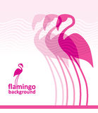 Flamingo background Royalty Free Stock Photo