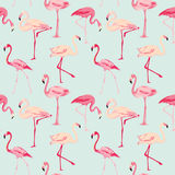 Flamingo Bird Background. Retro seamless pattern in vector Royalty Free Stock Photo