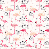 Flamingo Bird Background. Retro seamless pattern in vector Stock Images