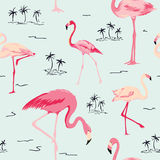 Flamingo Bird Background. Retro seamless pattern in vector Royalty Free Stock Images