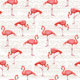 Flamingo Bird Background . Seamless vector pattern Royalty Free Stock Photo