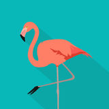 Flamingo bird. flamingo stand on one leg. Flat design style pink color on blue background with soft shadow. Vector illustration. Flamingo bird - Flamingo stand Royalty Free Stock Image