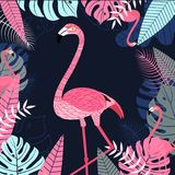 Flamingo bird with leaf and tropical background. Wildlife backgr. Ound for printing and web banner design. Vector illustration Royalty Free Stock Images