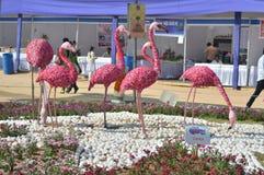 Flamingo bird statues Stock Image