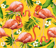Flamingo Bird and Tropical Flowers Background. Seamless pattern Royalty Free Stock Images