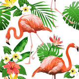 Flamingo Bird and Tropical Flowers Background - Seamless pattern stock illustration
