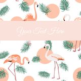 Flamingo birds green leaves sunset card template Royalty Free Stock Photo