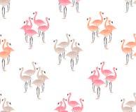 Flamingo Birds Seamless Pattern Stock Images
