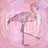 Flamingo black line drawing on abstract pink circle background composed from sliver Royalty Free Stock Photography