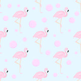 Flamingo and bubbles. Seamless background Stock Photography