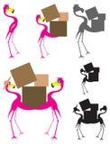 Flamingo Cartoon Moving Stock Photo