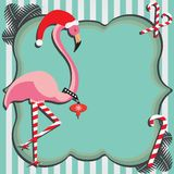 Flamingo Christmas Card Stock Photography