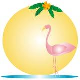 Flamingo cor-de-rosa ilustração royalty free