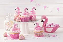 Flamingo cup cakes stock photo