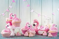 Flamingo cup cakes royalty free stock image