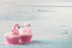 Flamingo cup cakes royalty free stock photos