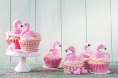 Flamingo cup cakes Royalty Free Stock Photography