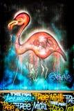 Flamingo dos grafittis Imagens de Stock Royalty Free