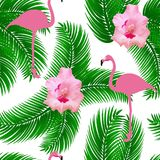 Flamingo exotisch naadloos vectorpatroon vector illustratie