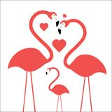 Flamingo family. Mom dad and child with hearts showing love Royalty Free Stock Photography