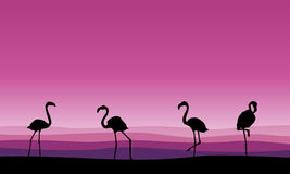 Flamingo family scene silhouettes collection. Vector illustration Stock Images