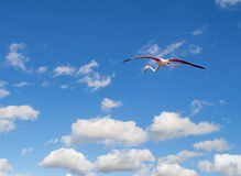 Flamingo flying in a blue sky Royalty Free Stock Photos