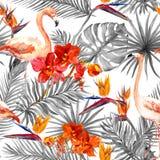 Flamingo, folhas tropicais, flores exóticas Fundo preto-branco sem emenda watercolor Fotos de Stock Royalty Free