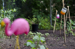 Flamingo in the garden with jars Stock Photo