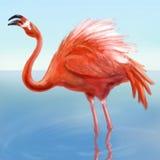Flamingo in het water Royalty-vrije Stock Fotografie