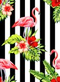 Flamingo and hibiscus tropical pattern, striped background Royalty Free Stock Photography