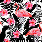flamingo and hibiscus watercolor pattern, parrots and tropical plants silhouette background Stock Photos
