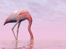 Flamingo hiding its head in water - 3D render Stock Photography