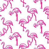 Flamingo hot pink outline sketch seamless vector texture. Stock Images